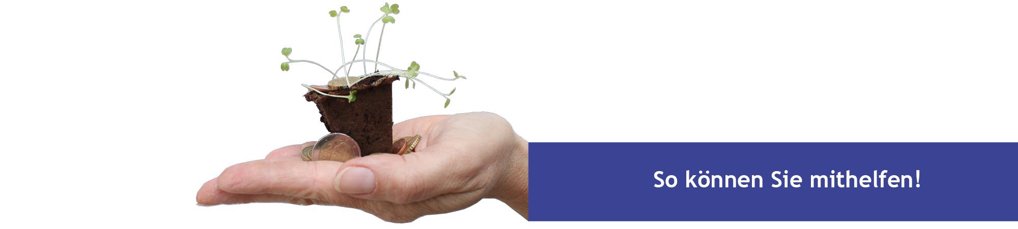 Spenden - eine ausgestreckte Hand mit einer jungen Pflanze als Symbolbild